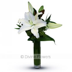 Minx In White (Oriental Lily)  Priced from $ 49  Click for more details