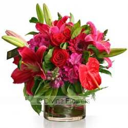 Signature Vase Red/Pinks  Priced from $ 290  Click for more details